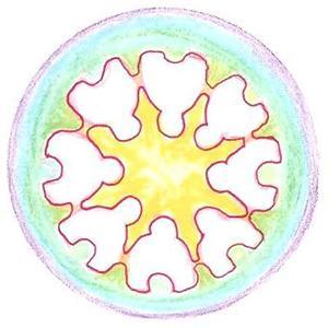 logo_krisolets